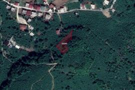 Ordu Çatalpınar Sayacatürk'te 1453m2 Satılık Arsa 47.500 TL